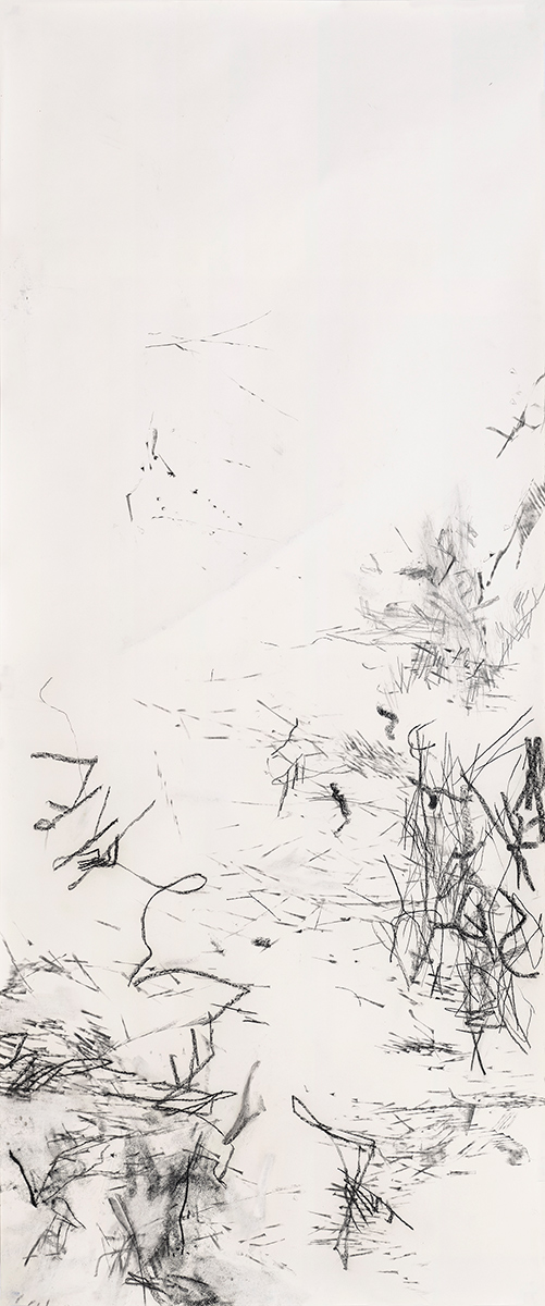 Force Field: Drawings by Christine Hiebert at the Hudson River Museum